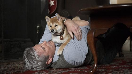 Hachi: A Dog's Tale