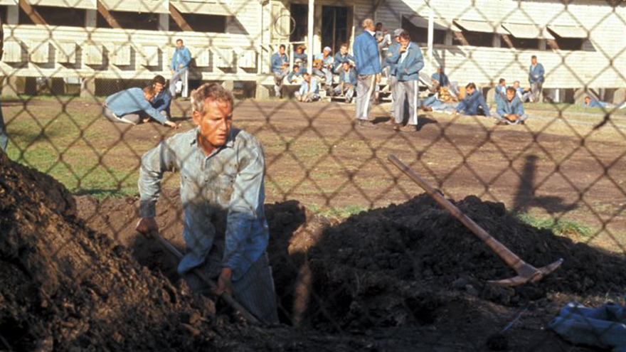 'Cool Hand Luke' on HDNET MOVIES
