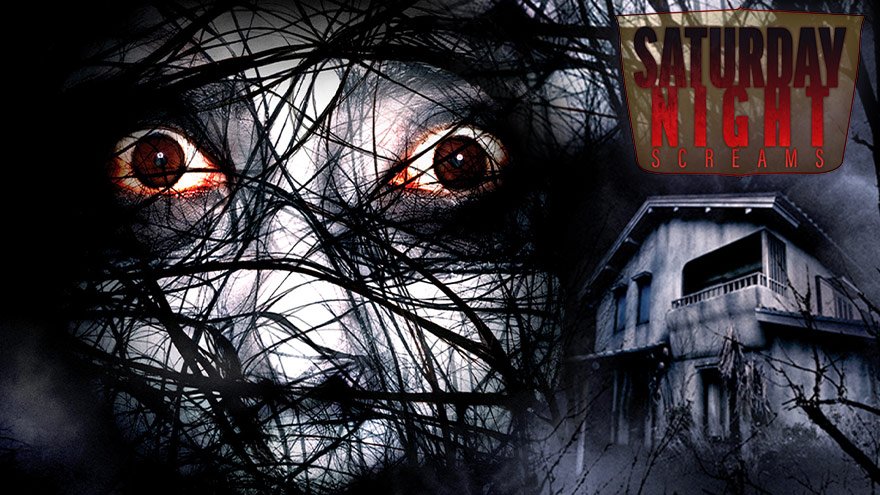 'The Grudge 2' | Saturday Night Screams on HDNET MOVIES